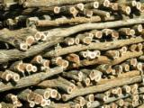 Firewood, Pellets And Residues - Firewood,sickle wood (Dicrostachys cinerea)