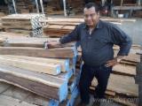 Hardwood  Logs Peeling Logs PEFC FFC - Peeling Logs, Cocobolo, PEFC/FFC