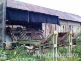 Austria Woodworking Machinery - Log feed in system
