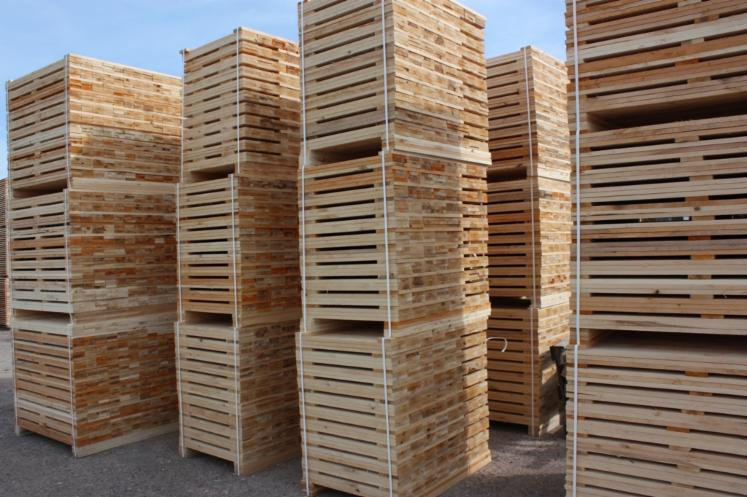 Sawn-Timber-from-softwood-or