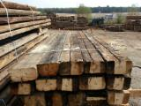 Unedged Timber - Boules for sale. Wholesale Unedged Timber - Boules exporters - Fir/Spruce, Boules, 12+ cm, Romania, SIBIU
