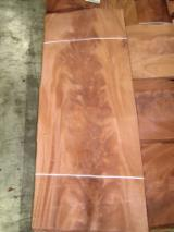 Sliced Veneer For Sale - Acajou d'afrique (African Mahogany, Khaya) Veneer