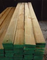 Softwood  Sawn Timber - Lumber - Radiata Pine (Pinus radiata, insignis)(South America), KD