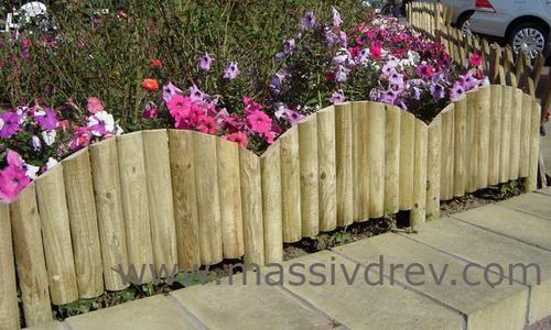 Fences of different types - Pino nano da giardino ...
