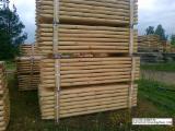 Nadelrundholz Zu Verkaufen Polen - Machine Rounded Pine Poles