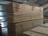 Fresh Pine Timber (DAP Riga, Latvia), 32x125 mm