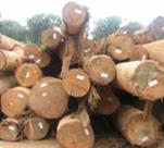 Quality Logs of diffrent diameters
