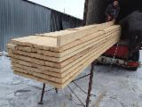 Pine wood timber from Ukraine - CIF China