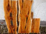 Softwood  Unedged Timber - Flitches - Boules - AD Yew Boules