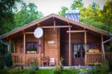 Case Din Lemn - Structuri Din Lemn Pt. Case  Molid - casă familială comodă de 94,50 m2.
