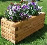Buy Or Sell  Garden Sets - Design Fir (Abies Alba) On Request Garden Sets GALATI Romania