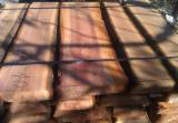 Laubholz  Blockware, Unbesäumtes Holz Serbien  - Blockware, Zwetschge