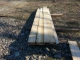 Unedged Timber - Boules for sale. Wholesale Unedged Timber - Boules exporters - Fir/Spruce, Boules, 50 mm, Romania