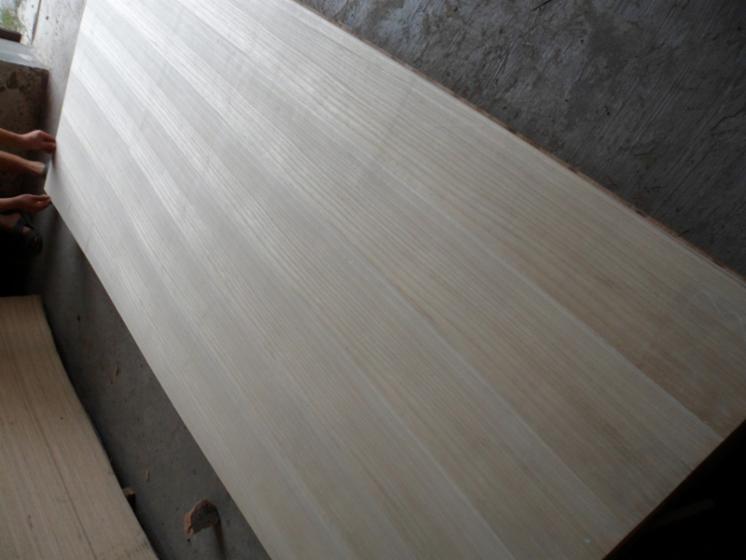 Paulownia---Poplar-Natural