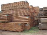 Tropical Wood  Sawn Timber - Lumber - Planed Timber - sawn and planed Sapelli,Padouk,Zingana and other Tropical wood up for