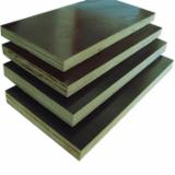 Plywood Poplar CE For Sale - Suppy film faced plywood
