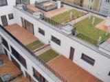 Terrassenholz Zu Verkaufen Slowakische Republik - Terrassenboden, Robinie, falsche Akazie, Rutschfester Belag(1 Seite)