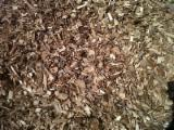Wholesale ISO-14001 Pine (Pinus sylvestris) - Redwood Wood Chips From Forest in Spain