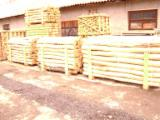 Hardwood  Logs Acacia For Sale - Cylindrical trimmed round wood, Acacia