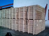 Hardwood  Logs For Sale Romania - 5+ cm Acacia  Conical Shaped Round Wood from Romania
