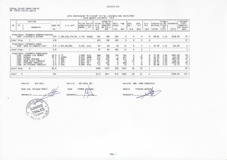 Beech-Standing-Timber-Bistrita-Nasaud