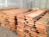 Hardwood  Unedged Timber - Flitches - Boules Walnut European France - Beech Lumbers - Unedged & Steamed