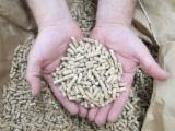 Firewood, Pellets And Residues - 100 % pure wood Pellets