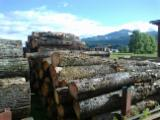 Hardwood  Unedged Timber - Flitches - Boules For Sale - Loose, Cherry (European Wild), PEFC/FFC