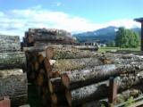 Hardwood  Unedged Timber - Flitches - Boules Beech Europe - Loose, Cherry (European Wild), PEFC/FFC