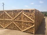 ASH FIREWOOD BY PALLETS 1M3