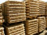 Hardwood  Logs For Sale - Cylindrical Trimmed Round Wood, Aspen, white poplar