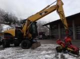 Skidding - Forwarding, Processor, CAT mit Woody 60H