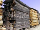 Buy Or Sell Hardwood Lumber Boules - Boules, Oak, PEFC/FFC