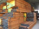 Red Meranti sawn timber ( Lumber)