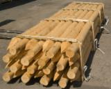 Softwood  Logs - Machine rounded and debarked pointed palisades