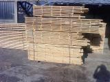 Sawn And Structural Timber Beech - Cut beech lumber