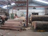 Desenrollo Argentina - red hardwood, corte al torno