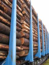Wood Transport Services - from Russia Latvia