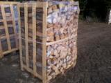 Firewood Cleaved - Not Cleaved, Firewood/Woodlogs Cleaved, Oak (European)