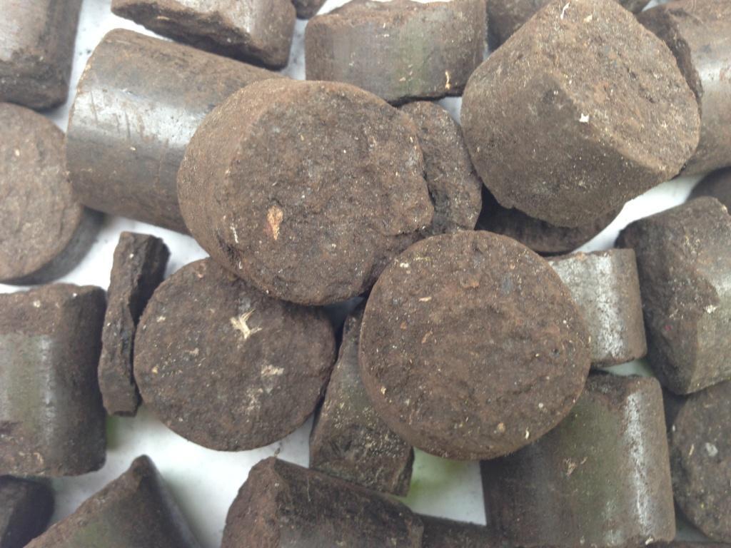 Charcoal Briquettes Wood ~ Pellets briquets charcoal wood all specie
