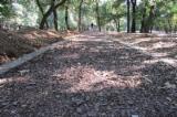 Company OD SILVER sale bark mulch 9000 begs/40l, www.silvermalc.co.rs