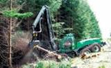 Forest Services - Mechanized felling, France