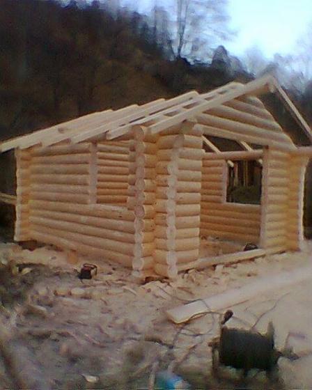Casa di tronchi canadese abete resinosi europei for Piccoli piani di casa europei