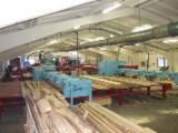 Complete Automatical cutting line small big logs