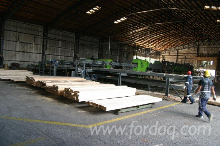 Sawing-lines-MEBOR--strong-construction