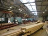 Neu 2013 Cutting Lines Sägewerk Zu Verkaufen in Slowenien
