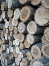 Cylindrical Trimmed Round Wood - Round acacia, stakes offer