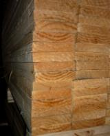 Chile - Fordaq Online market - Woods for Pallets