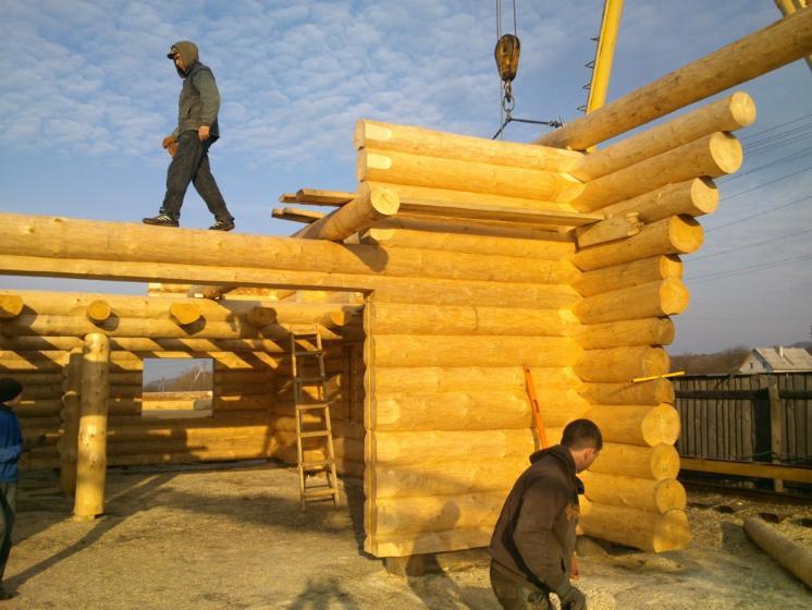 Case Di Tronchi Americane : Casa di tronchi canadese sitka resinosi nord americani