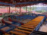 Fordaq mercado maderero  - Línea De Secamiento CL LEGNO Nueva Italia